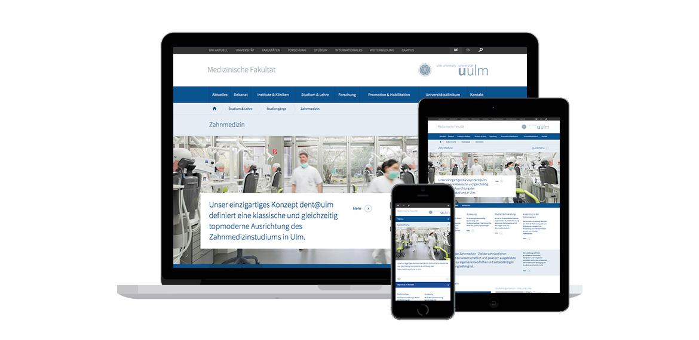 NEUE WEBSITE - Medizinische Fakultät der Universität Ulm Beispielbild 16_1